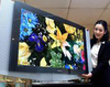 LCD 화질·PDP 가격 '비교 우위'