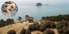 충남 서해안 주꾸미 축제 풍성