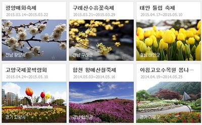 3월 봄 축제