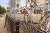 비전고 울타리 위 흉측한 철조망