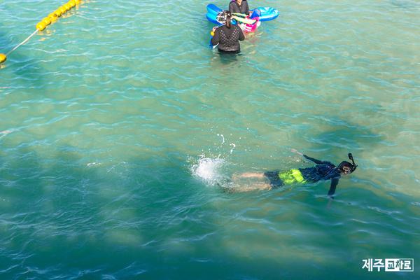 [테마여행]스노쿨링 하기 좋은 여름 물놀이 장소 3